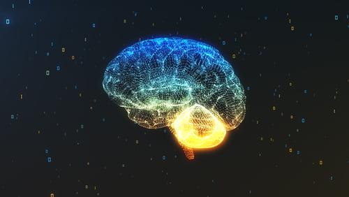 Methamphetamine Effect on the Brain